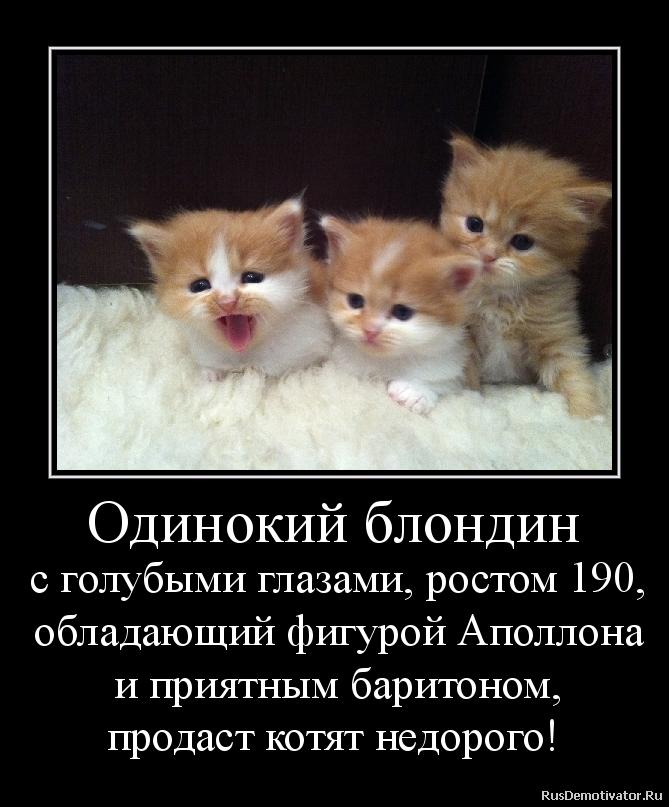 Месяц аскания нова заповедник фото с надписями на украинском презентации расстегнул испачканную