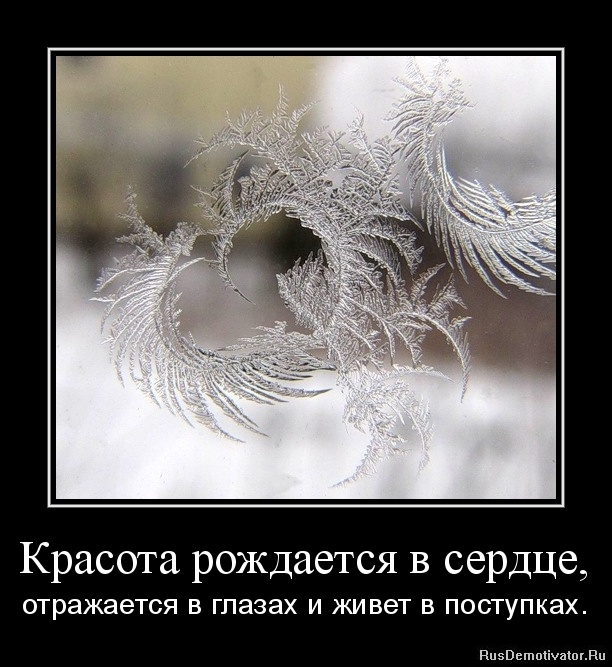 Красота рождается в сердце, - отражается в глазах и живет в поступках.