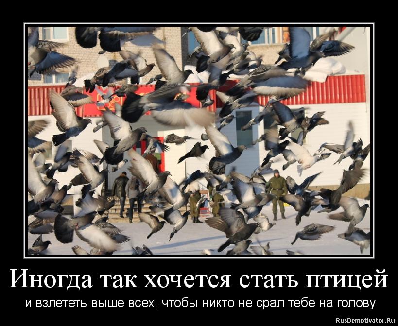 Русская жена сыт в рот 9 фотография