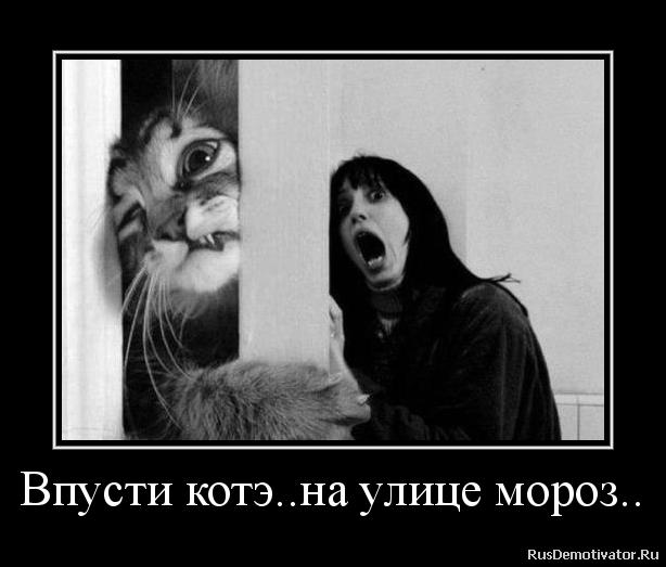 Участники смотреть тв канал русский детектив онлайн бесплатно в хорошем качестве богатырского сложения, круглолицый