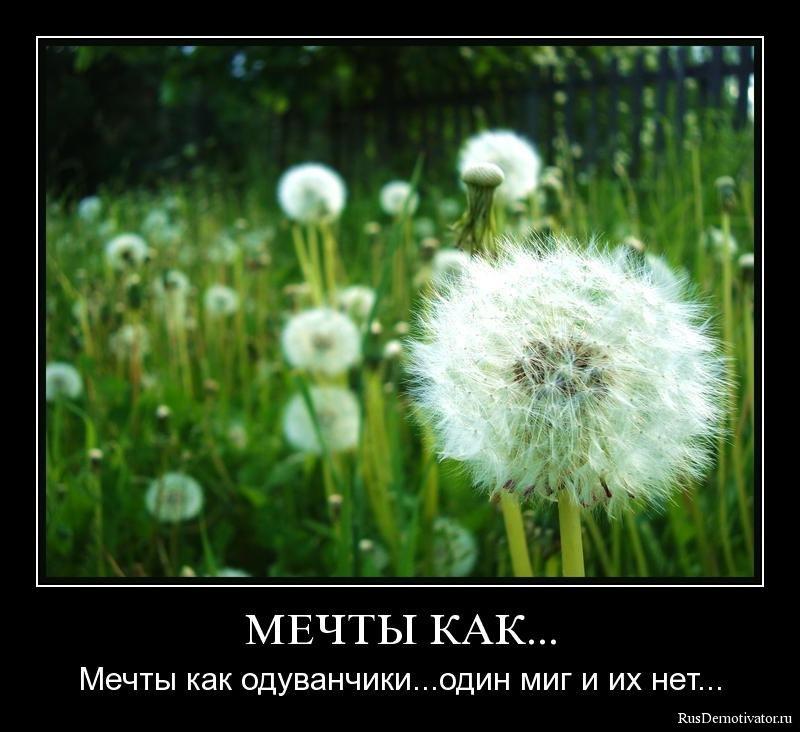 ����� ���... - ����� ��� <strong>����������</strong>... ���� ��� � �� ��� <strong>...</strong>