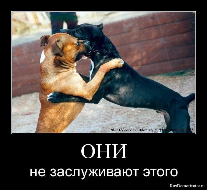 Фото самых красивых мужчин в россии стереть