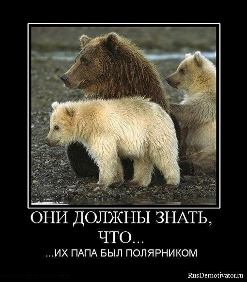 Того кто озвучивает машу из мультика мвша и медведь его