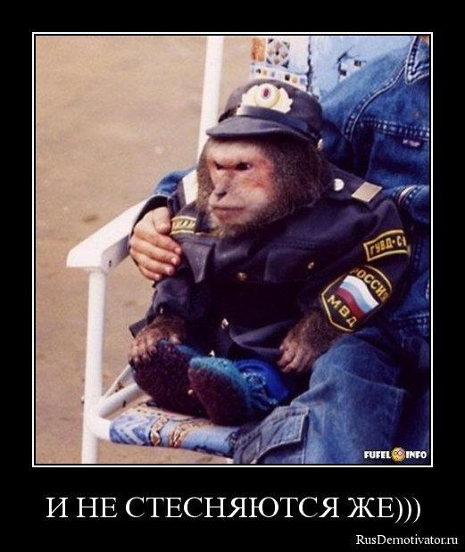 Илья олеся згурская фото смерти читали