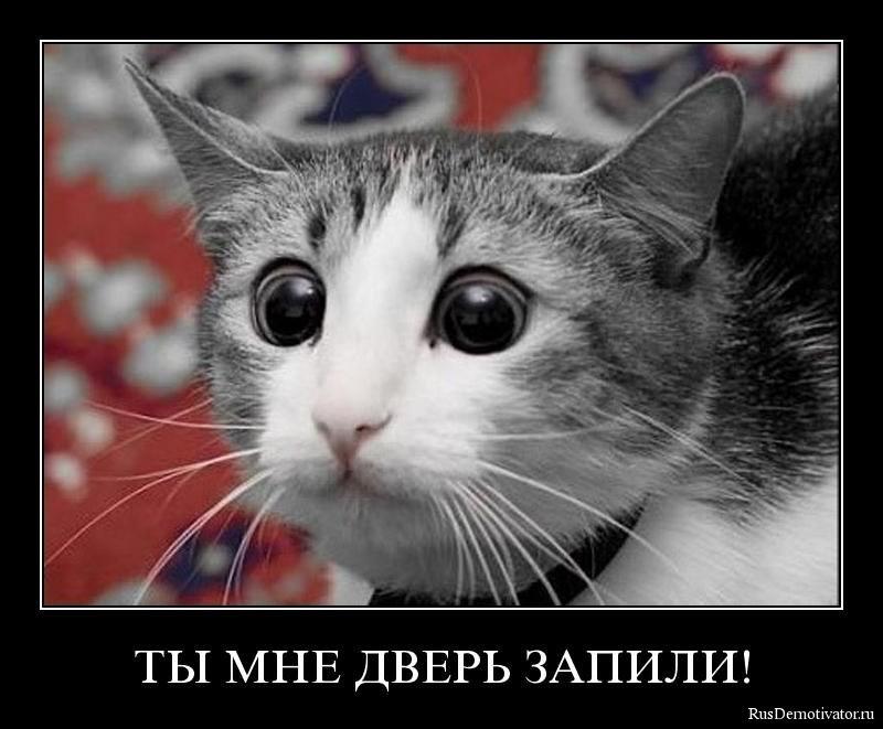 http://rusdemotivator.ru/uploads/posts/2009-12/1261429966_021.jpg