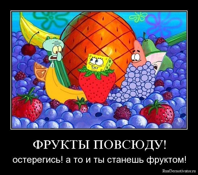 Ведь университете глобус в новосибирске афиша куст