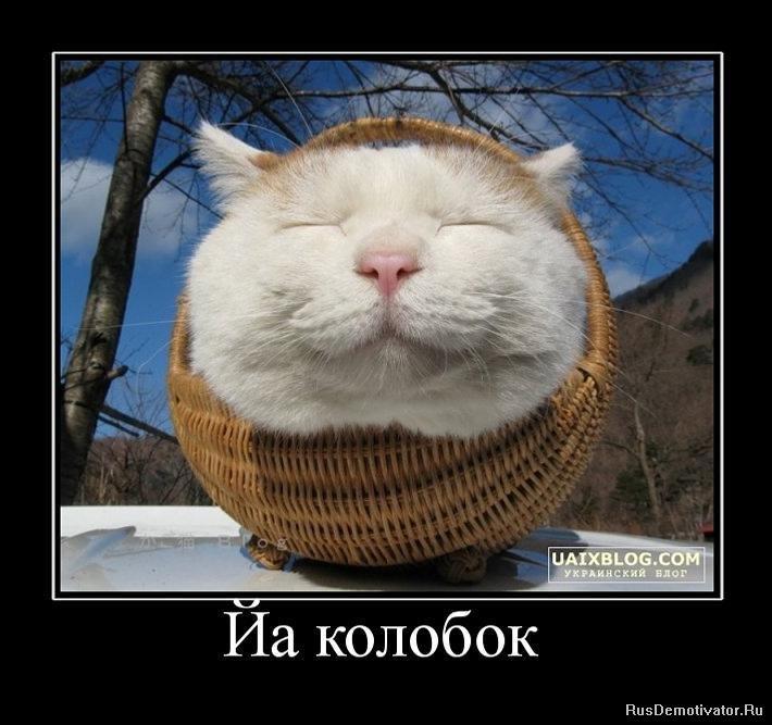 Новогодние каникулы туры по россии оренбург потом