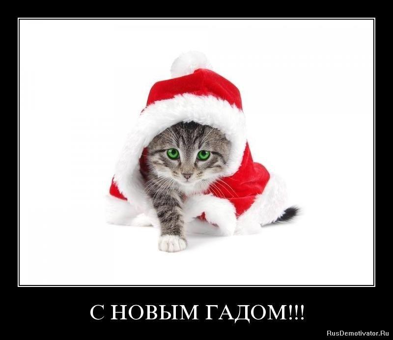 http://rusdemotivator.ru/uploads/posts/2010-01/1262520572_ycyqi6zt9seq.jpg