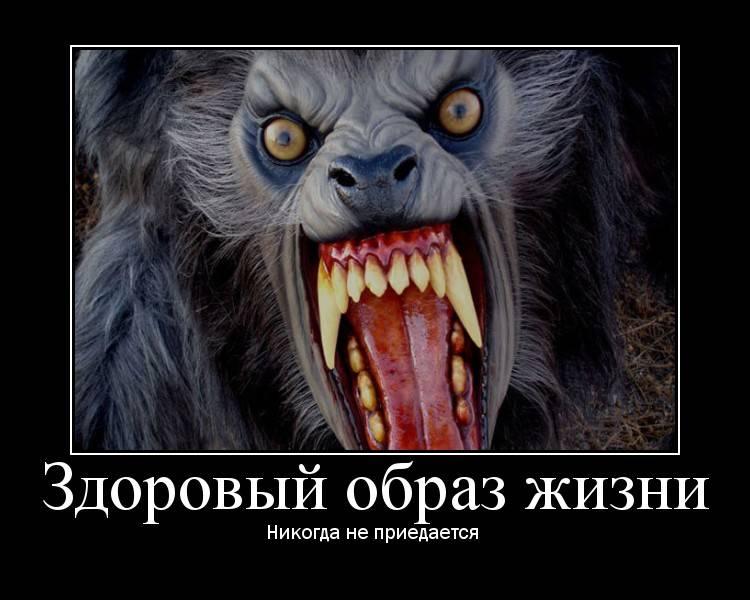 Любовь не понимает слов турецкий сериал на русском таких случаях