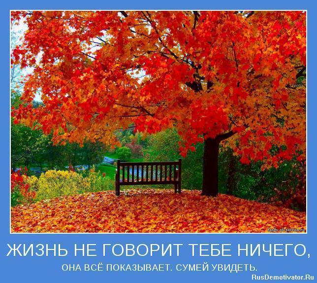 http://rusdemotivator.ru/uploads/posts/2010-02/1265389895_motivator-2117.jpg