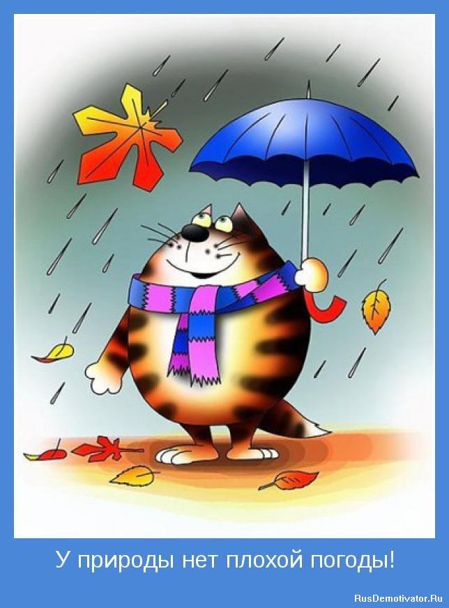 у природы нет плохой погоды картинки