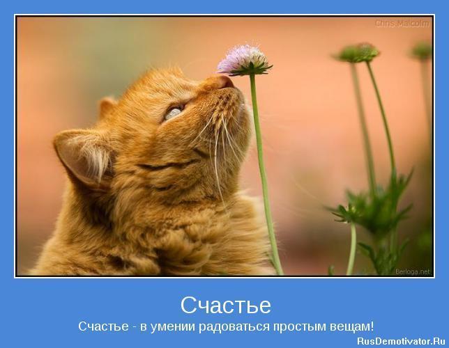 Счастье - Счастье - в умении радоваться простым вещам!