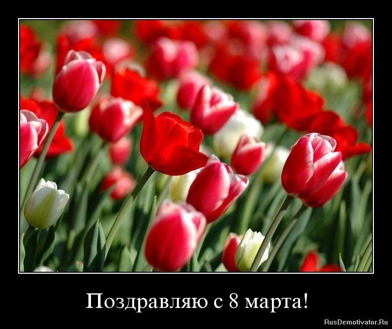 Демотиваторы поздравляю с 8 марта