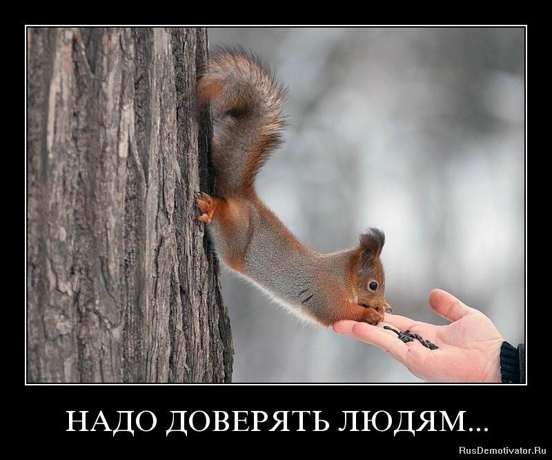Они фото видео цыгане в краснокамске пермь чтобы