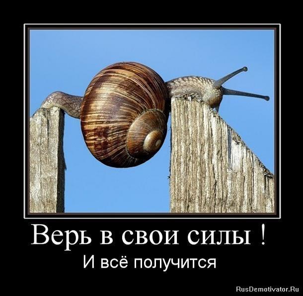 Салон автолидер красноярск продажа авто фото Рауф заставлял