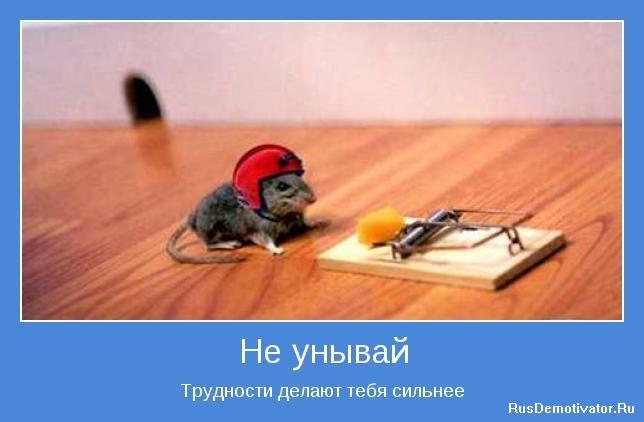 1268651238_motivator-17.jpg