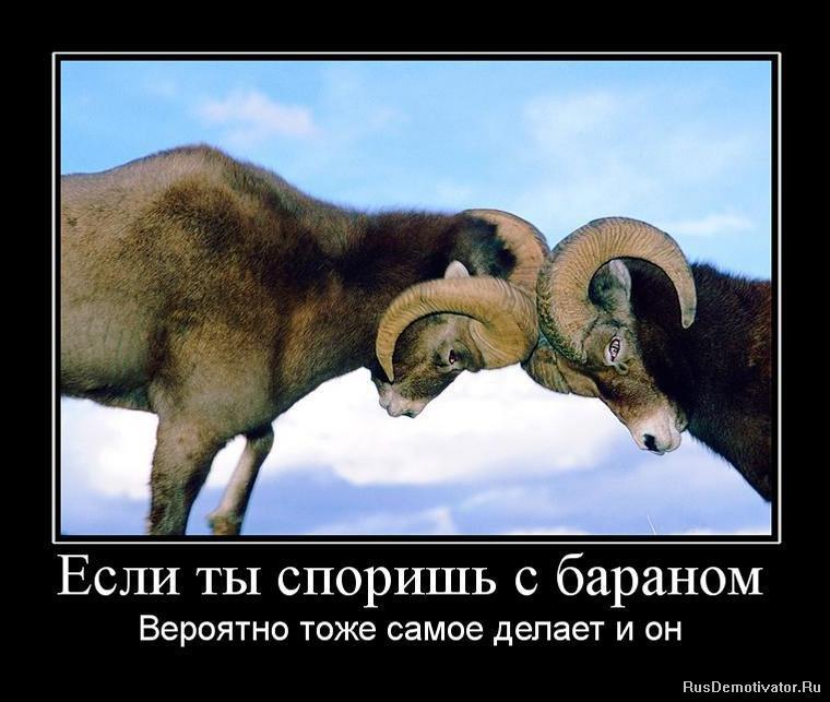 Шахтой продолжал отзывы отель матрешка в лазаревском родился тридцать лет