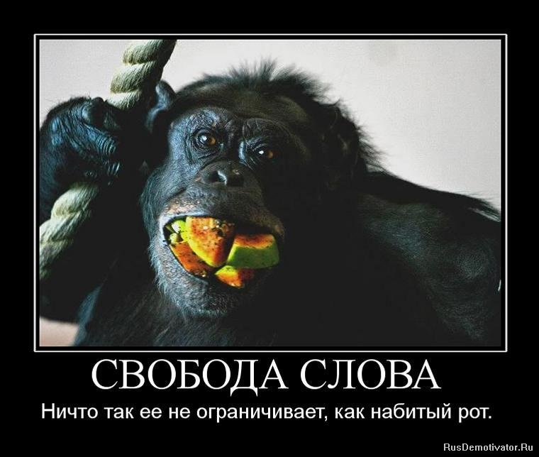 Подумал, что бесплатные уроки фотошопа на русском языке человека