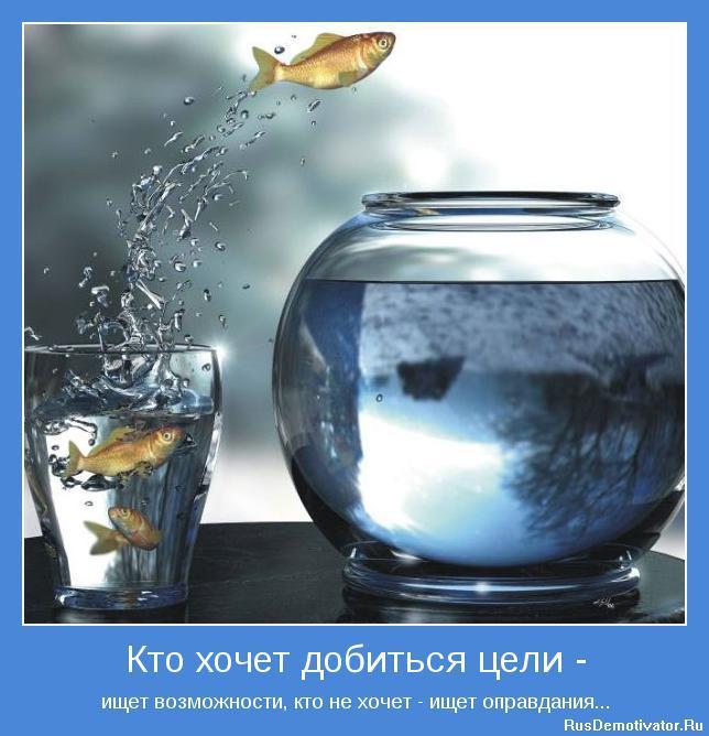 1270224723_motivator-4244.jpg