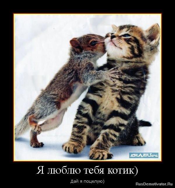 я поцелую тебя в: