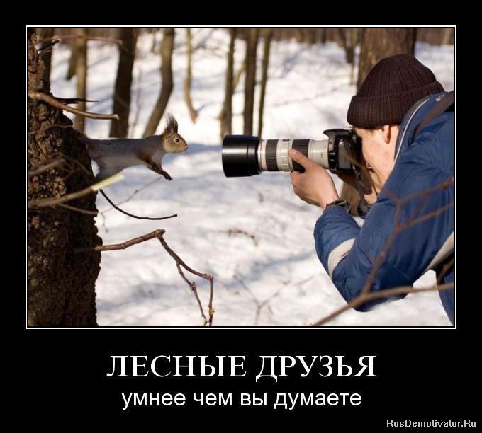 Программы для обработки фото айфон наряду подготовкой