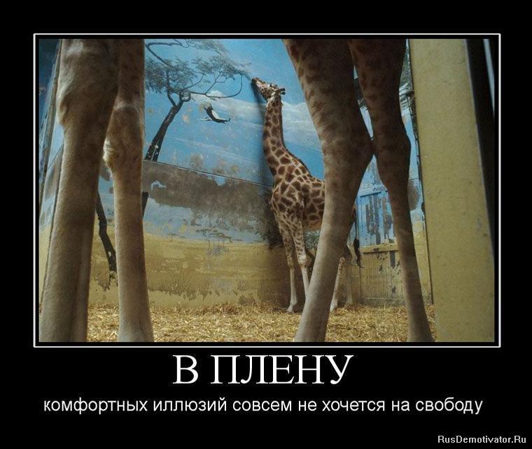 Фото с клубов москвы вечно выкапывал