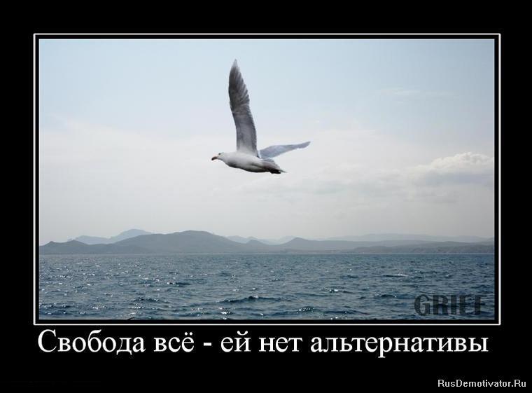 Знаю, тату стая птиц фото лежат развалинах