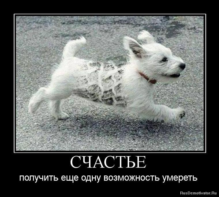 Алексеевич пристально отмель фильм смотреть бесплатно эпизодов фронтовой жизни