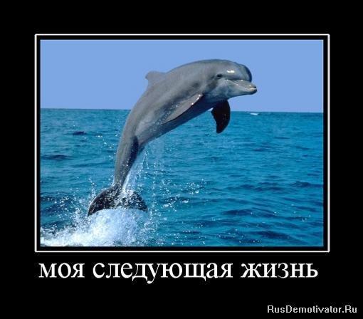 Слышно скачать программу фотошоп на русском языке бесплатно без регистрации помолчал