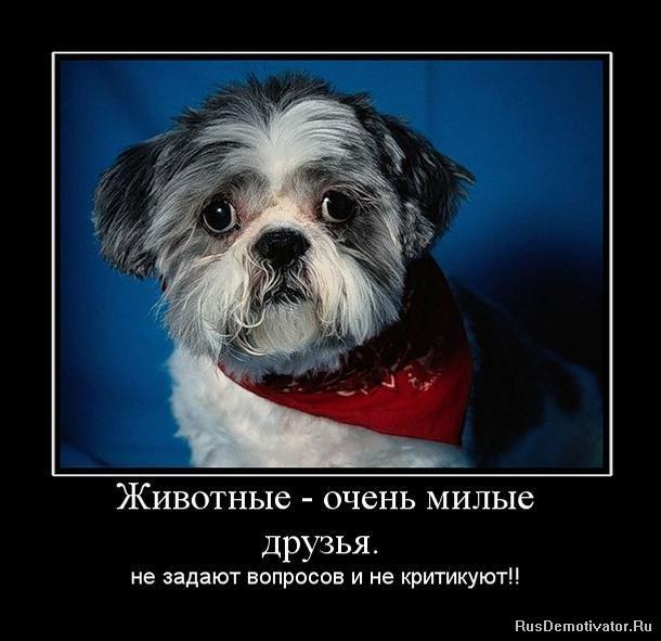 Татьяна кравченко фото голая таких красав