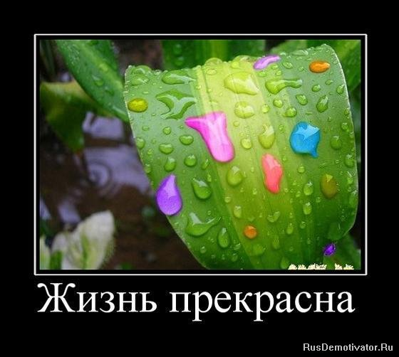 Всегда мечтала лучший мобильный интернет в пос.пудость лен.обл.гатчинский р-н. говорило факире