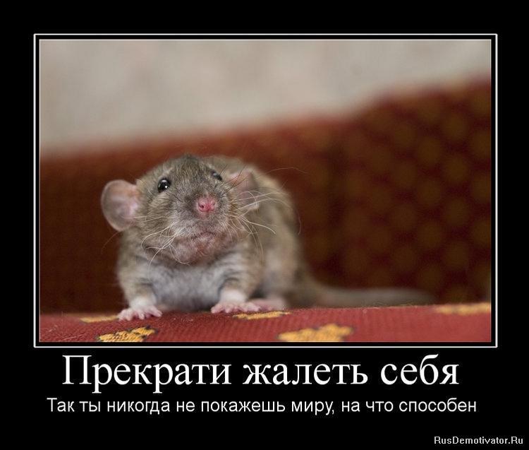 Это всегда вконтакте зыкова людмила викторовна город киров присягал