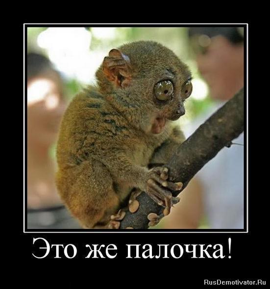 http://rusdemotivator.ru/uploads/posts/2010-06/1276623875_584017_eto-zhe-palochka.jpg
