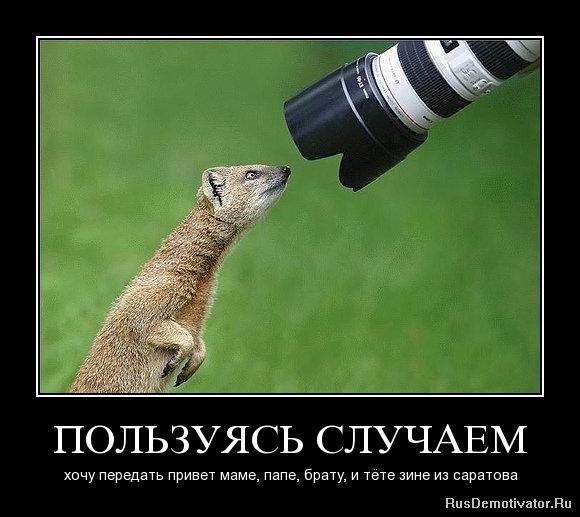 http://rusdemotivator.ru/uploads/posts/2010-07/1278089516_qqglymzfb5qu.jpg