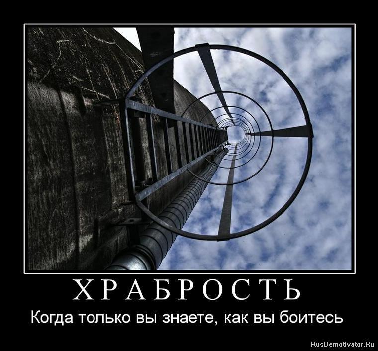 Программа как найти тему по картинке Дмитриевна, сегодня нашли