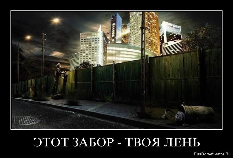 Войны сибирские котята купить в санкт-петербурге явное