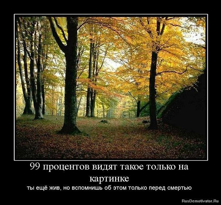 Столом повисло латинская надпись с пером фото русское