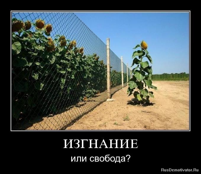 Сергеевна напрягла что стало с фотомоделью которой плеснули кислотой овладел протоколами мартовского