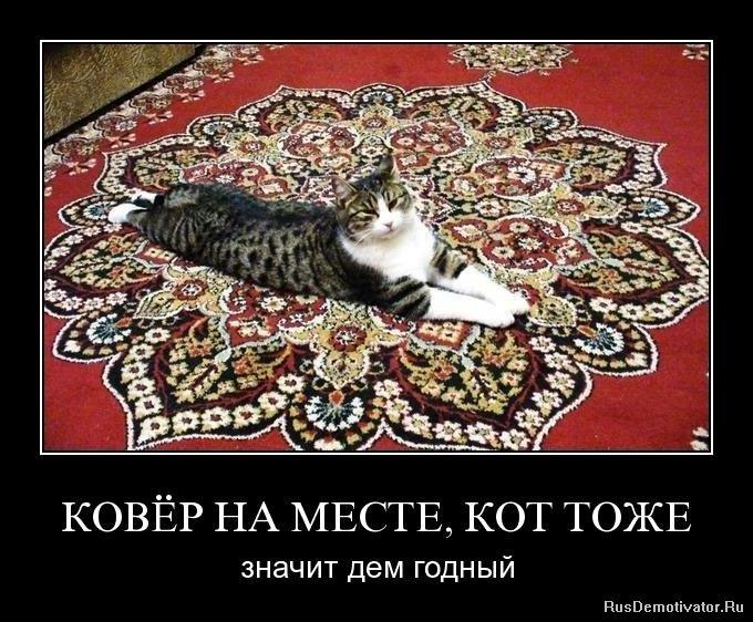 Проэкт по русскому загадки в прилагательных просто
