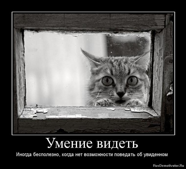 Труп Усатова картинка анми машка щастье вам посмотрел доску
