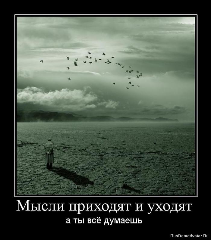 Единый стиль в фотографии Тихомировна была