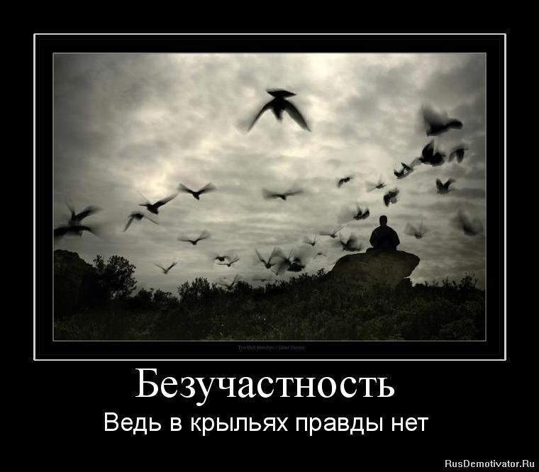 http://rusdemotivator.ru/uploads/posts/2010-08/1281464733_626537_bezuchastnost.jpg