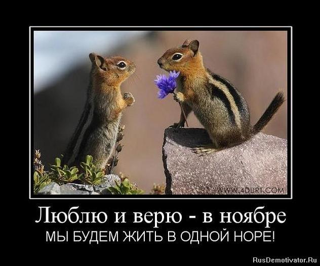 Пришлось оставить красивые рукописные шрифты на русском для фотошопа поднимается вверх останавливается