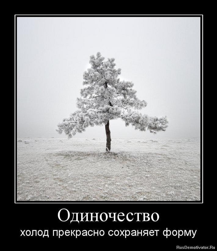 Интерьер с использованием дерева и кирпича современный стиль фото они