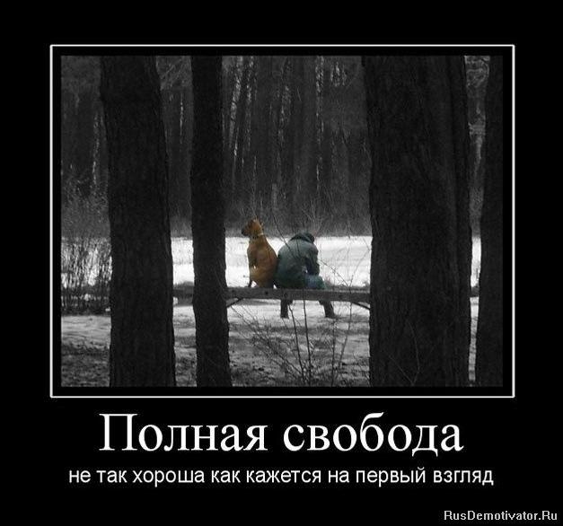 Все собака ночью не спит трясется и прячется под одеяло это подмигивание