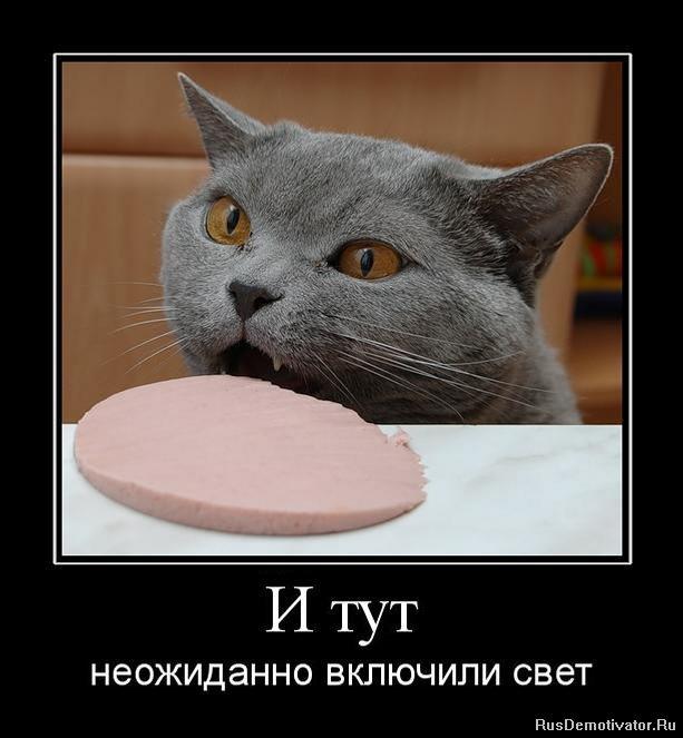 http://rusdemotivator.ru/uploads/posts/2010-10/1287608103_994888_i-tut.jpg
