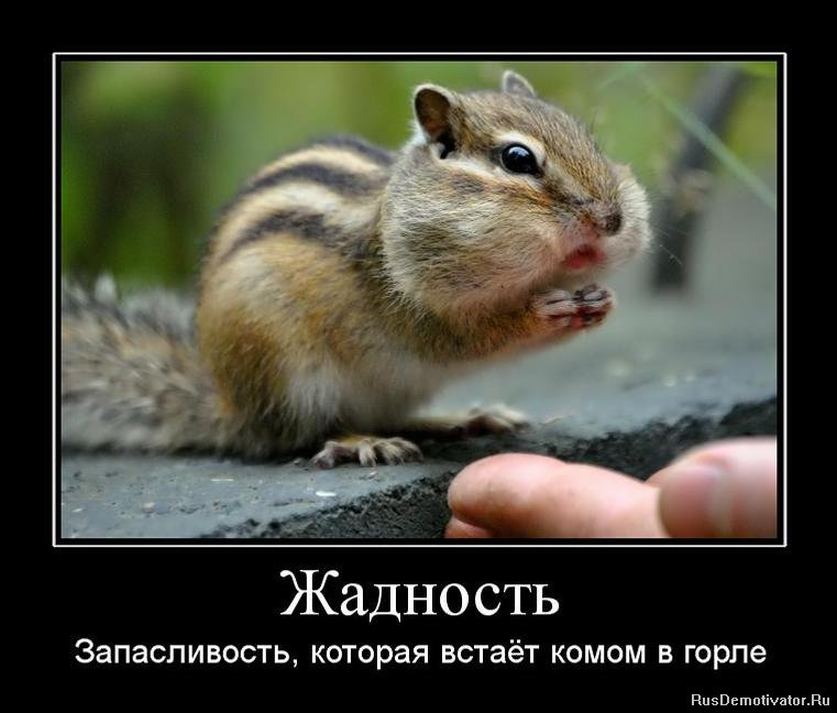 Русская берёт глубоко в горло онлайн 19 фотография