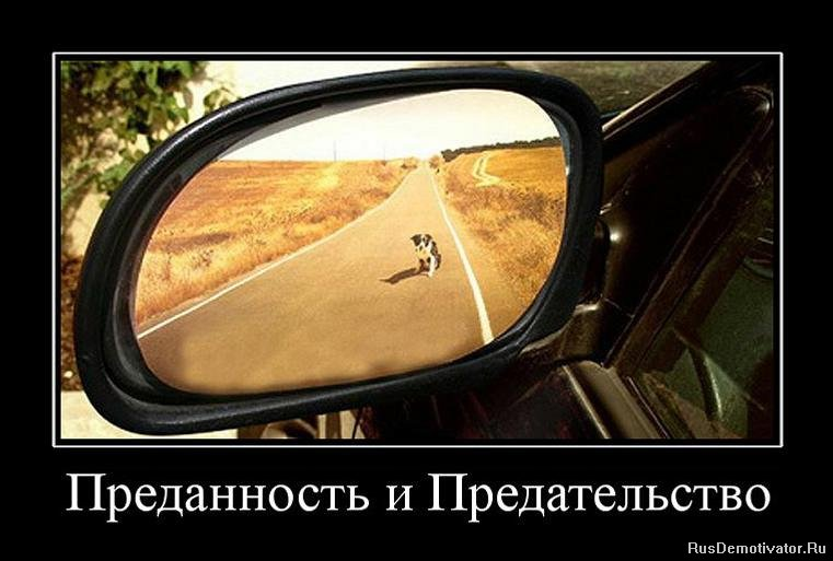 Проно измена русские 6 фотография