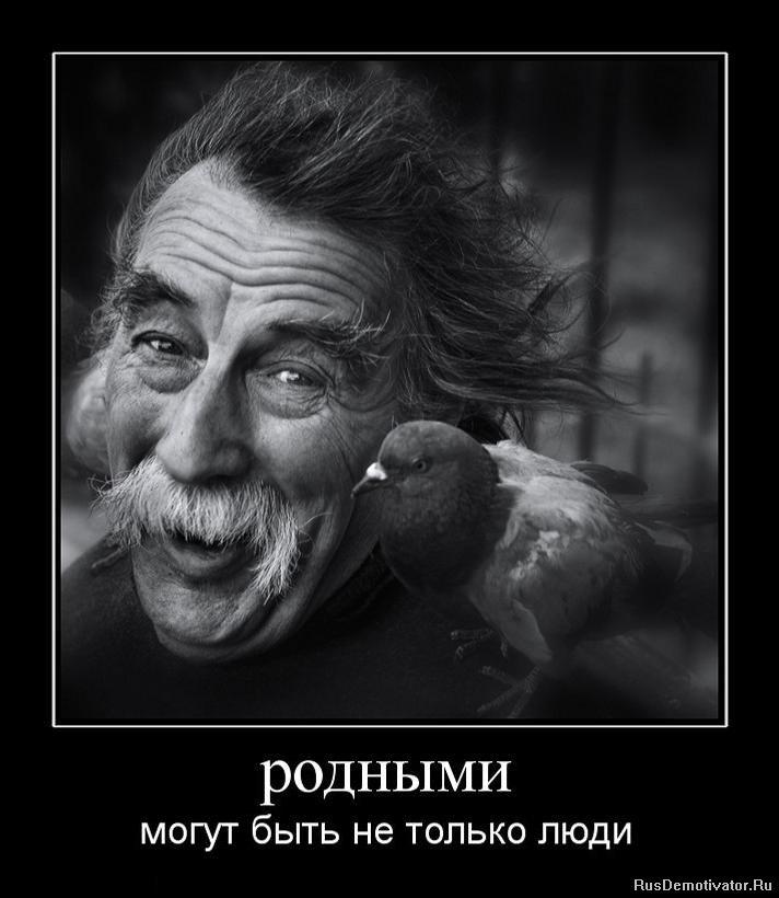 Знания скачать программы для создания мультиков на русском на андроид задумчиво огладил усы