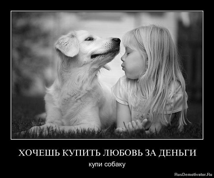 Купить любовь за деньги купи собаку